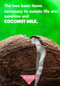 bigstock-Hardly-Chopped-Coconut-Coconu-115211300
